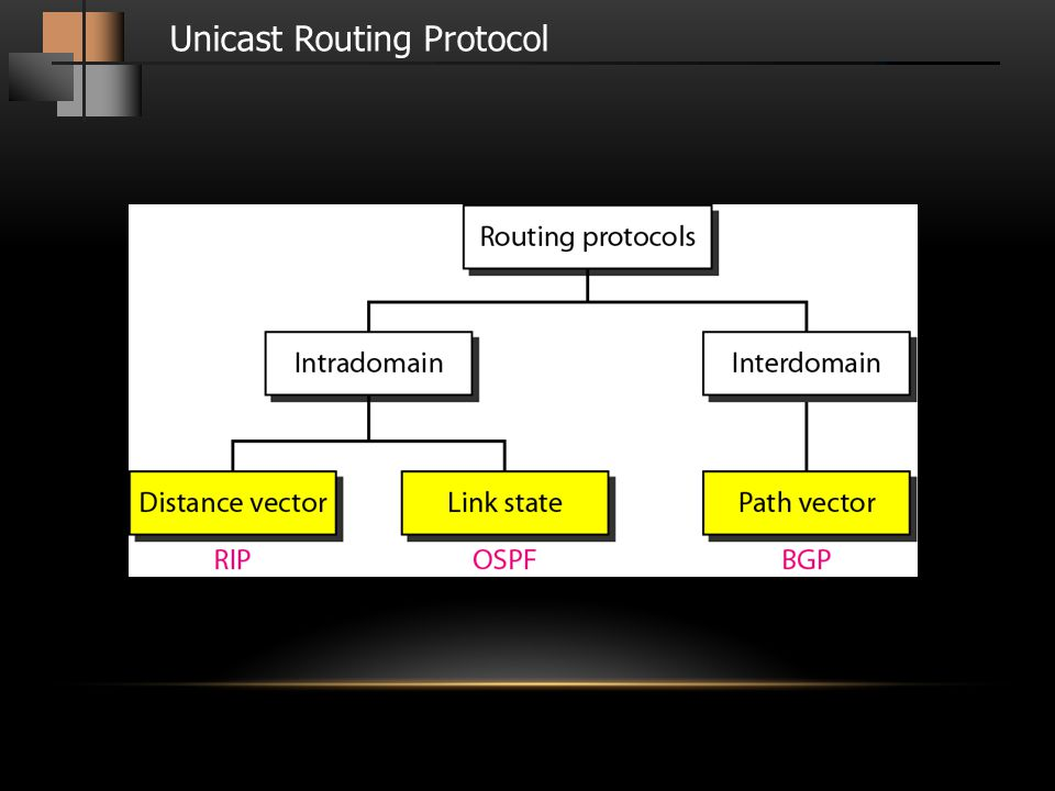 Unicast Routing Protocol