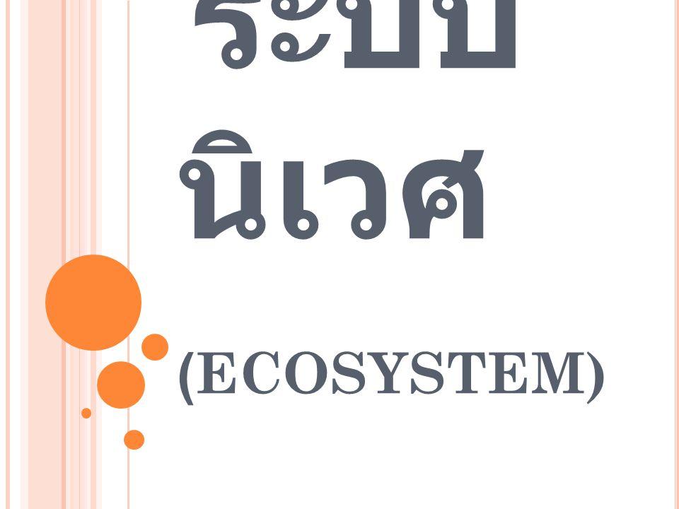 ระบบนิเวศ (ECOSYSTEM)