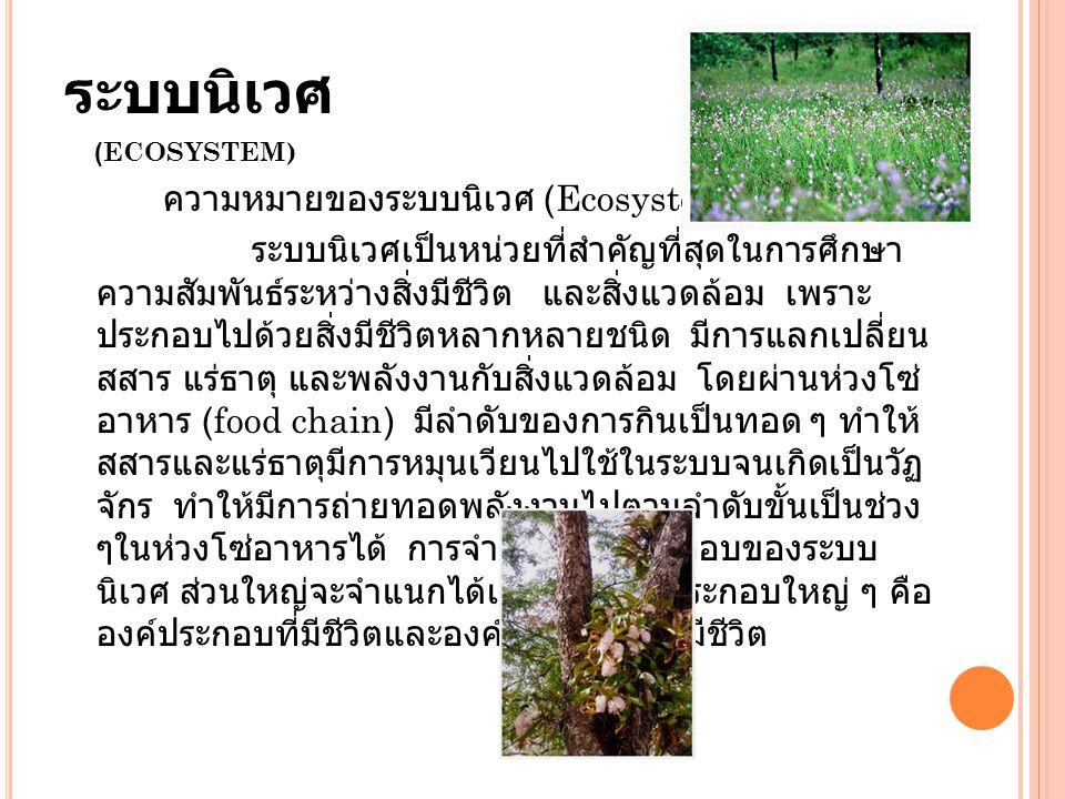 ระบบนิเวศ ความหมายของระบบนิเวศ (Ecosystem)