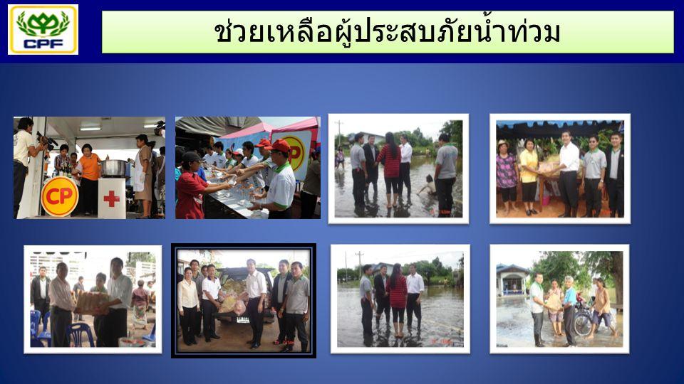 ช่วยเหลือผู้ประสบภัยน้ำท่วม