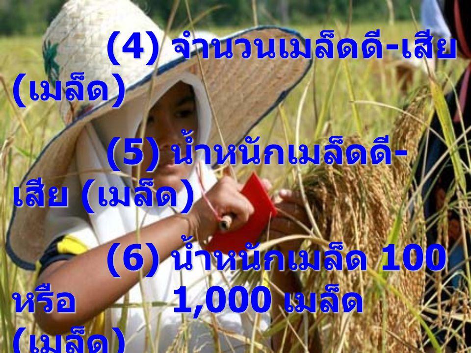 (4) จำนวนเมล็ดดี-เสีย (เมล็ด)