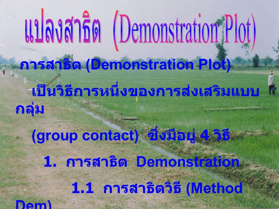 แปลงสาธิต (Demonstration Plot)