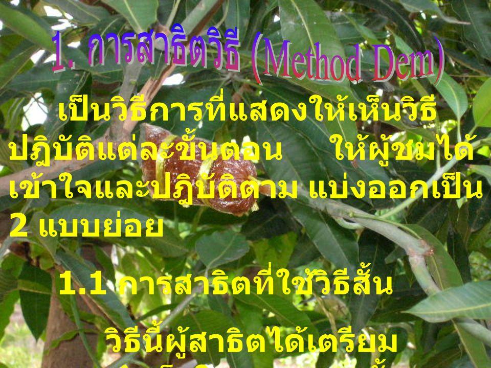 1. การสาธิตวิธี (Method Dem)
