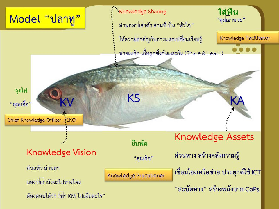 KS KA KV Model ปลาทู Knowledge Assets Knowledge Vision
