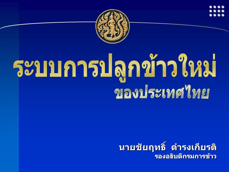 ระบบการปลูกข้าวใหม่ ของประเทศไทย