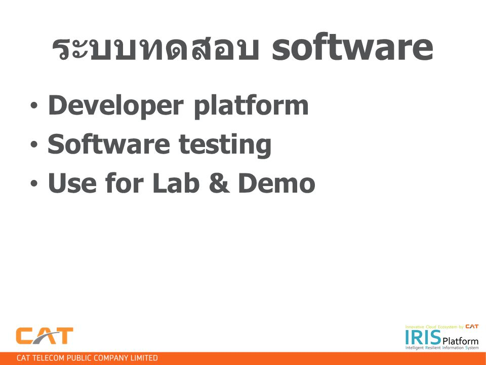 ระบบทดสอบ software Developer platform Software testing