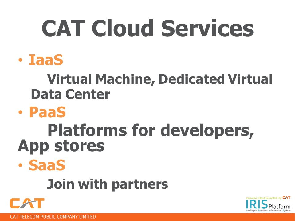 CAT Cloud Services IaaS PaaS Platforms for developers, App stores SaaS