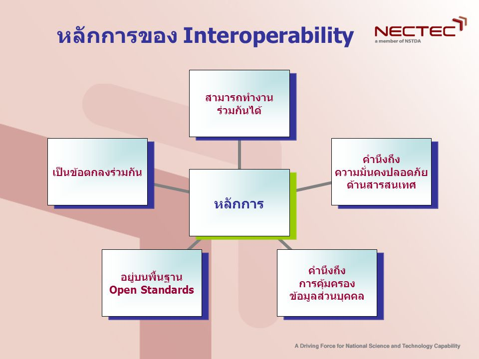 หลักการของ Interoperability