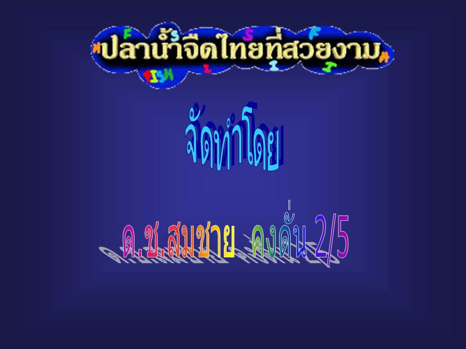 จัดทำโดย ด.ช.สมชาย คงดั่น 2/5