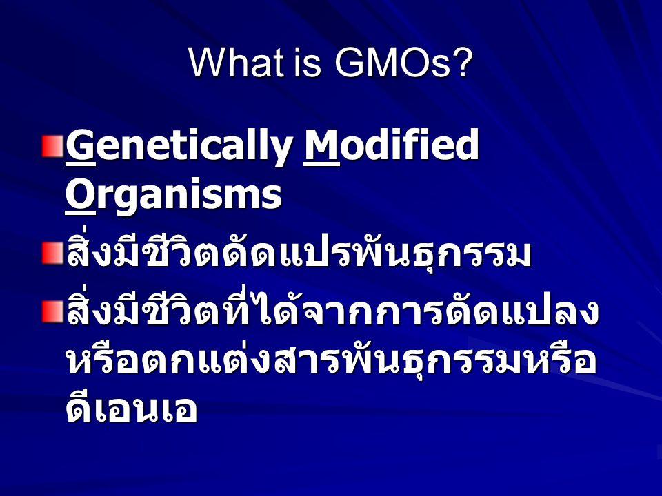 What is GMOs. Genetically Modified Organisms. สิ่งมีชีวิตดัดแปรพันธุกรรม.