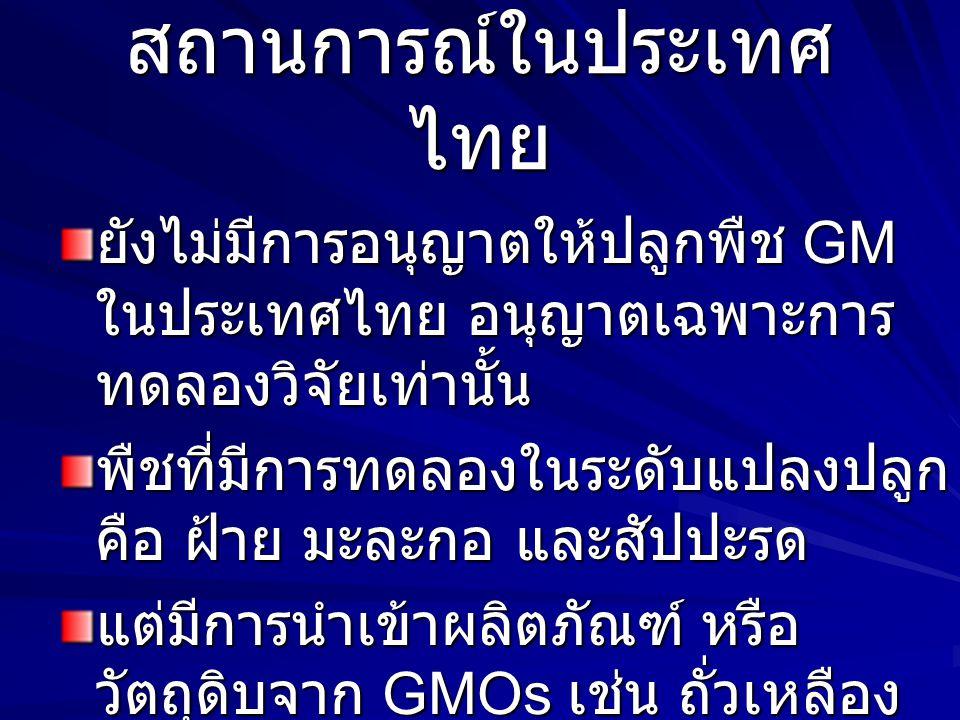 สถานการณ์ในประเทศไทย