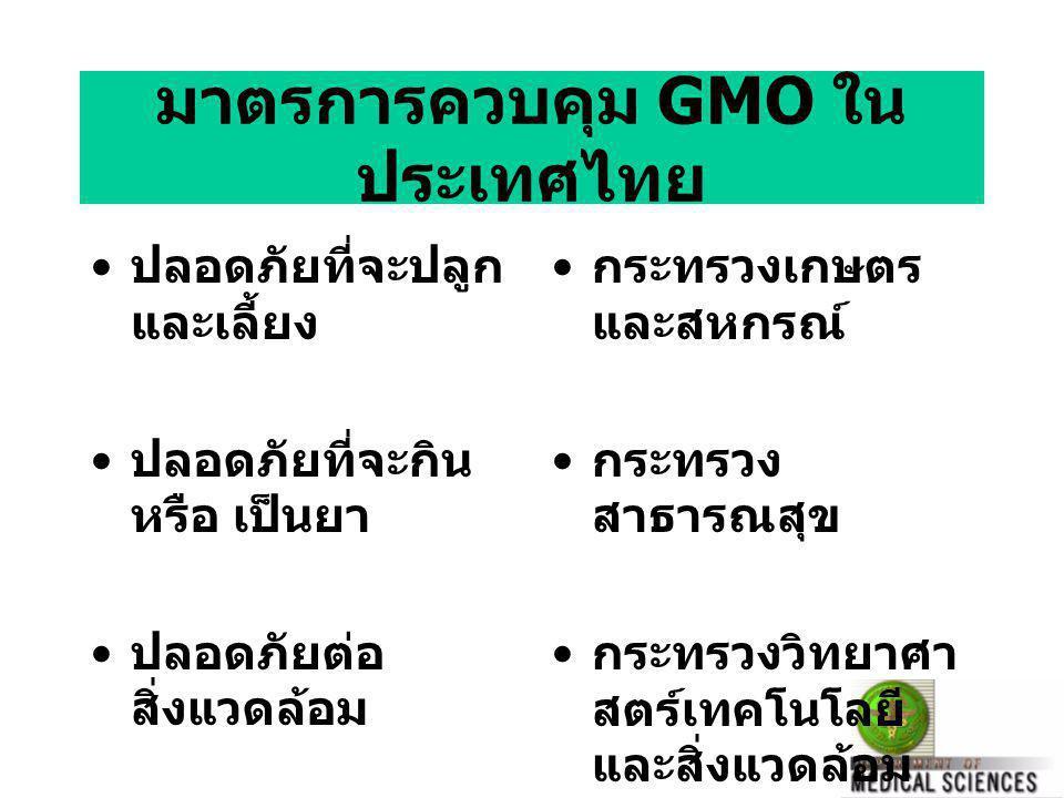 มาตรการควบคุม GMO ในประเทศไทย