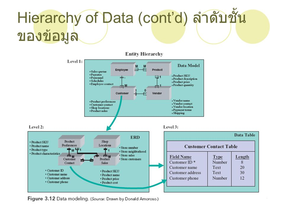 Hierarchy of Data (cont'd) ลำดับชั้นของข้อมูล