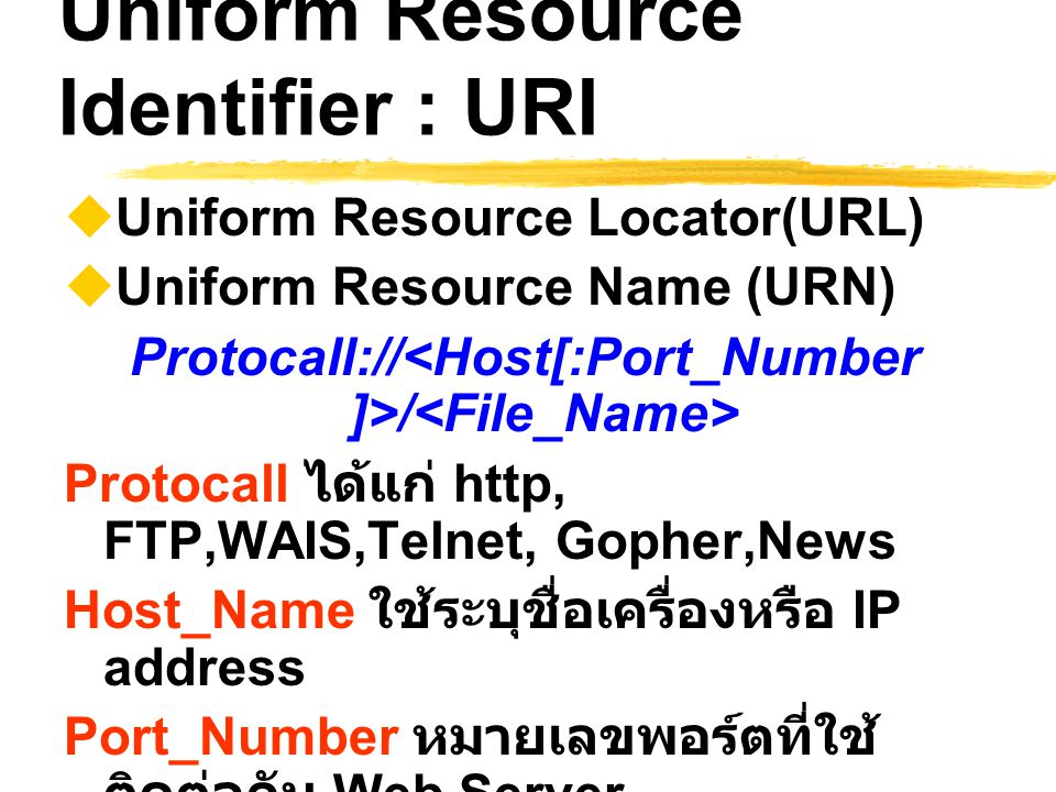 Uniform Resource Identifier : URI