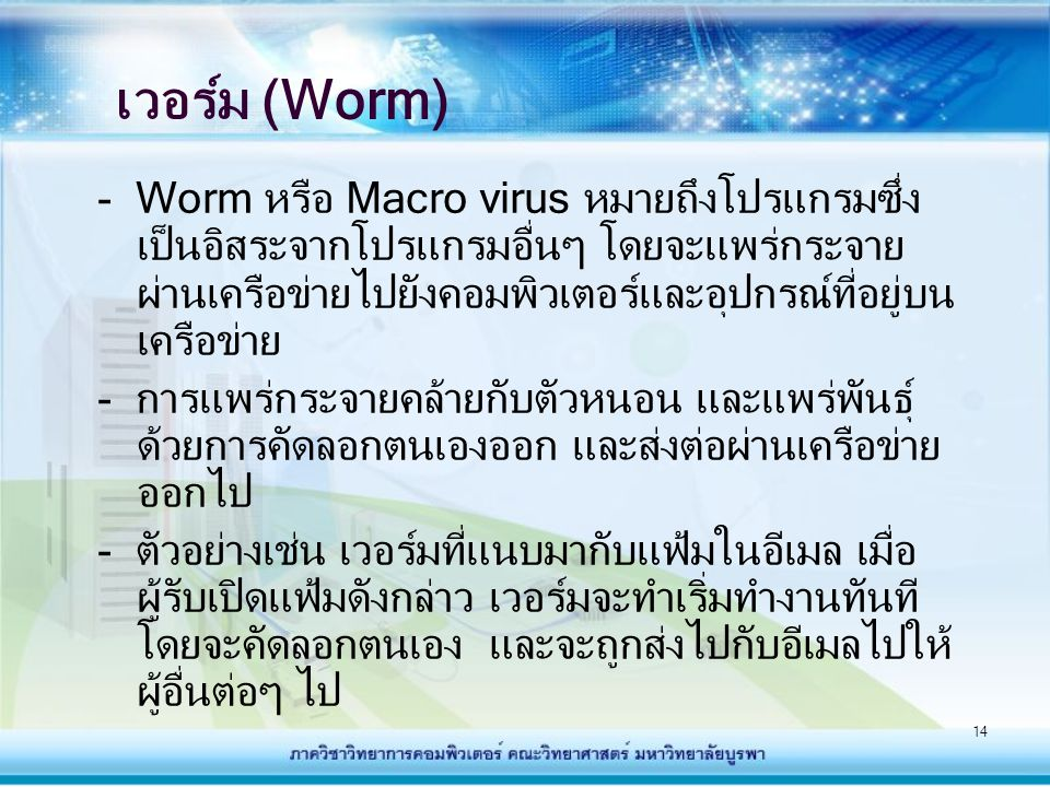 เวอร์ม (Worm)