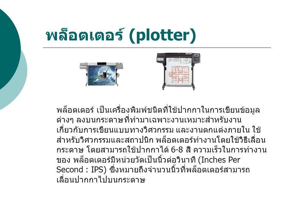พล็อตเตอร์ (plotter)