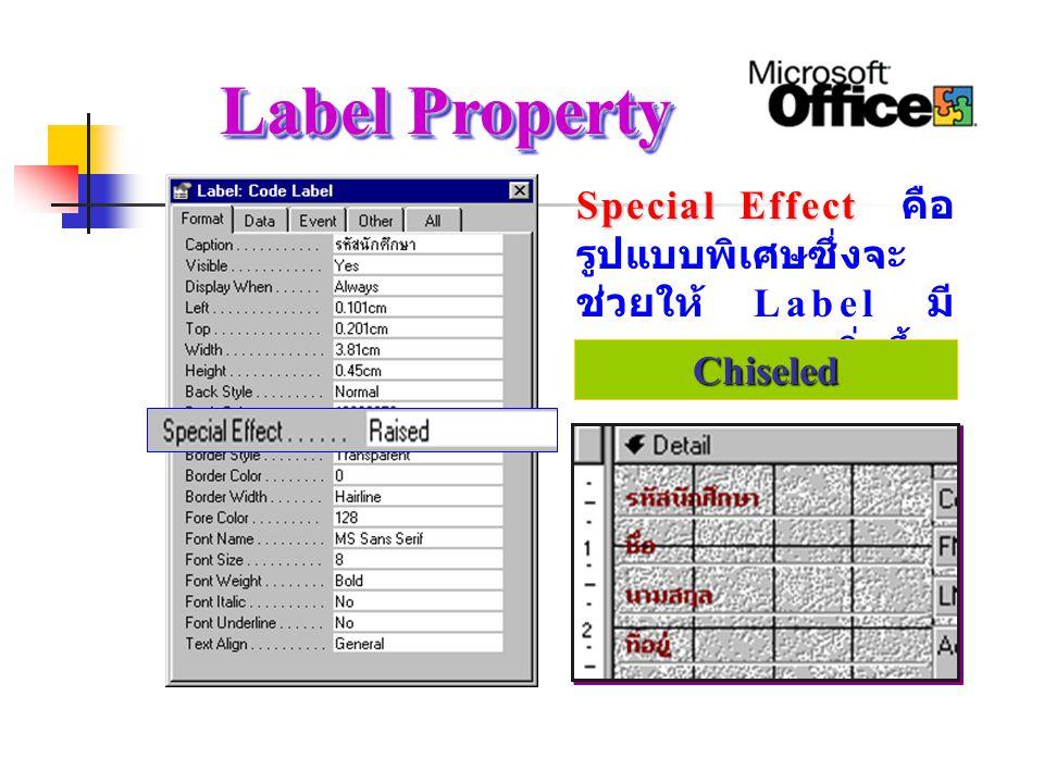 Label Property Special Effect คือรูปแบบพิเศษซึ่งจะช่วยให้ Label มีความสวยงามยิ่งขึ้น. Shadowed.