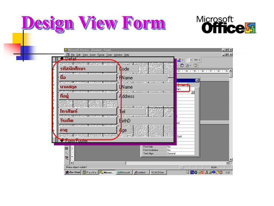 Design View Form