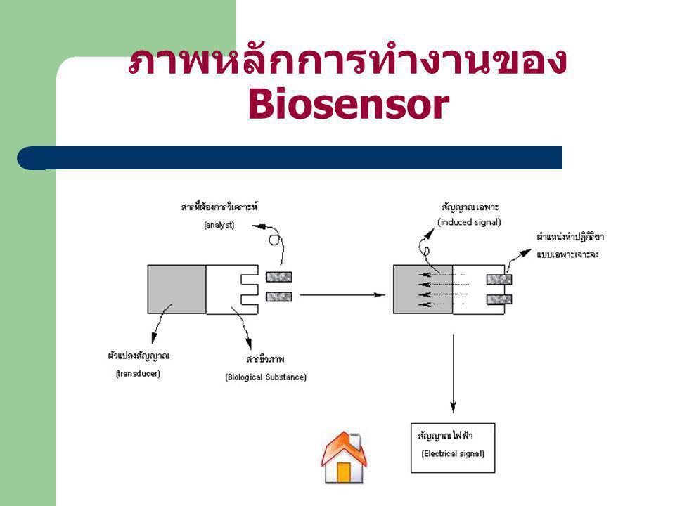 ภาพหลักการทำงานของ Biosensor