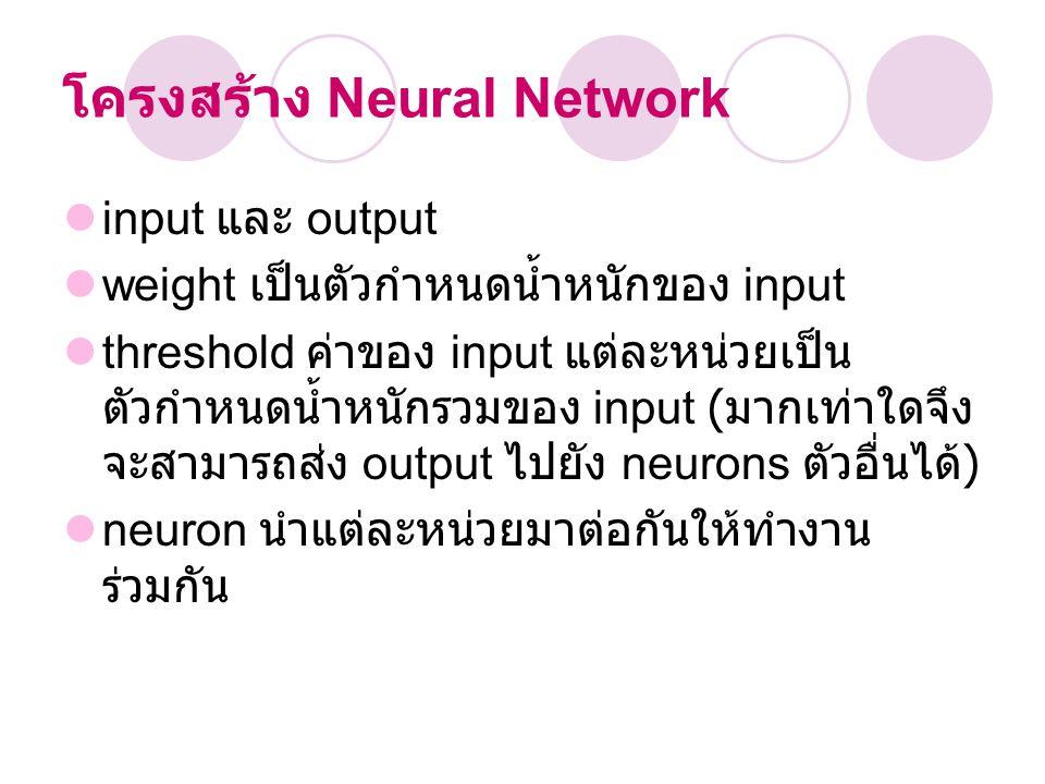 โครงสร้าง Neural Network