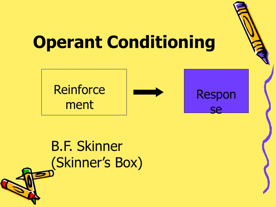 Operant Conditioning B.F. Skinner (Skinner's Box) Reinforcement