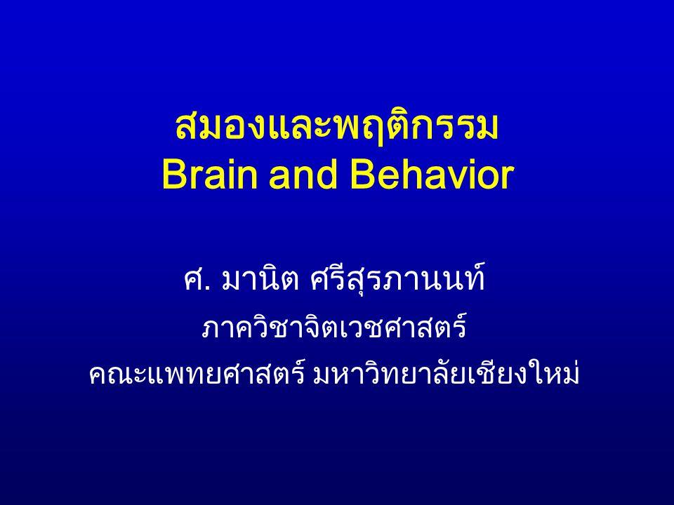 สมองและพฤติกรรม Brain and Behavior