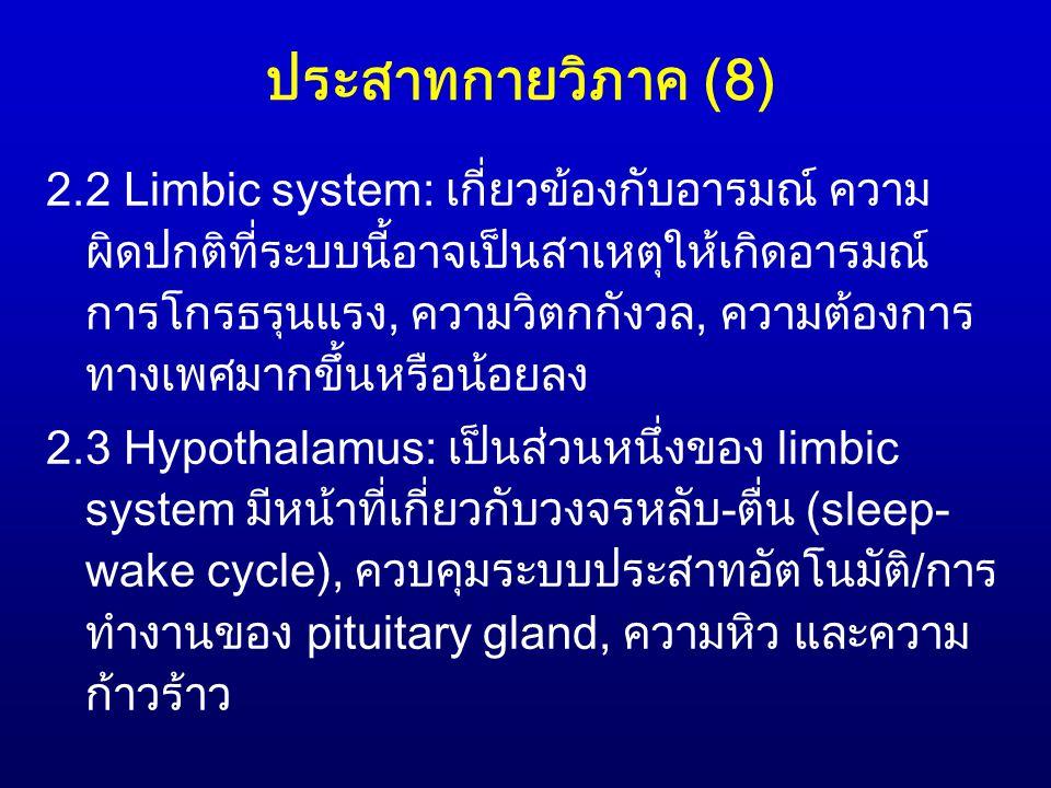 ประสาทกายวิภาค (8)