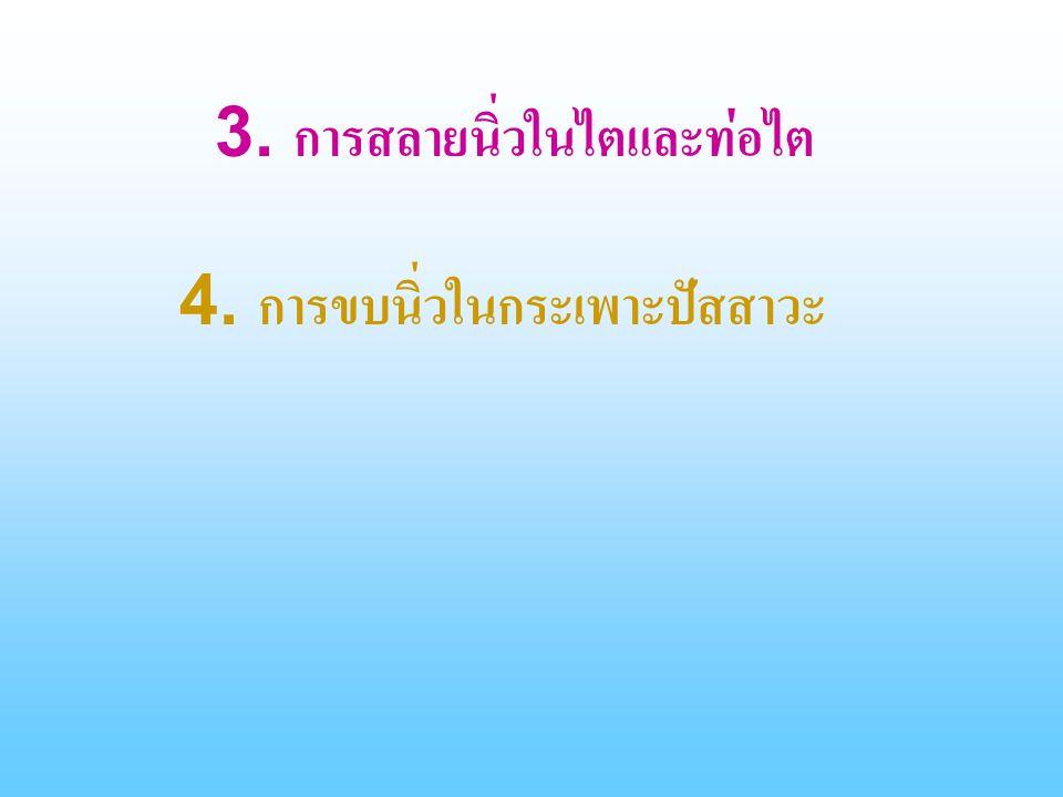 3. การสลายนิ่วในไตและท่อไต