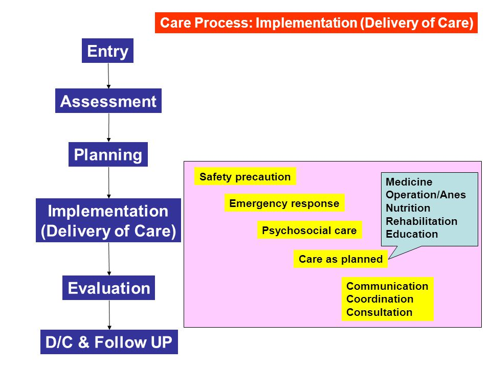 Implementation (Delivery of Care)