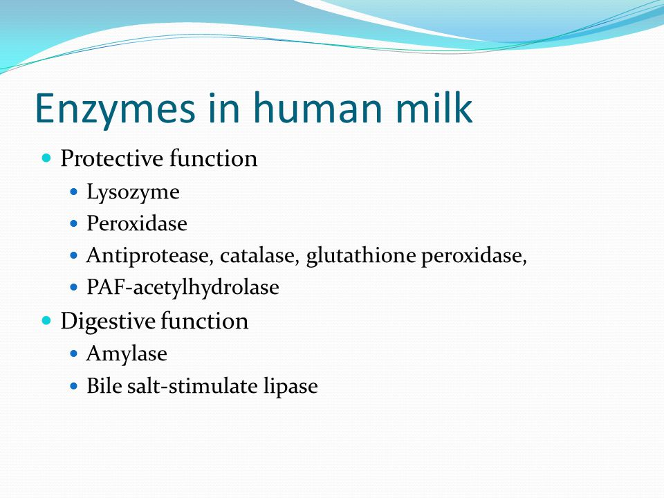 Enzymes in human milk Protective function Digestive function Lysozyme
