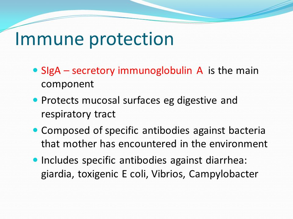 Immune protection SIgA – secretory immunoglobulin A is the main component. Protects mucosal surfaces eg digestive and respiratory tract.