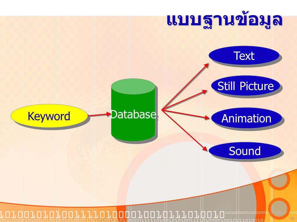 แบบฐานข้อมูล Database Text Still Picture Animation Sound Keyword