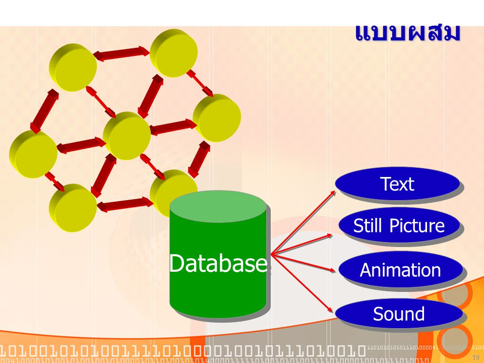 แบบผสม Database Text Still Picture Animation Sound