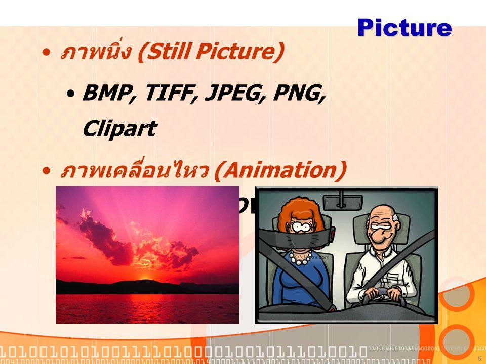 Picture ภาพนิ่ง (Still Picture) BMP, TIFF, JPEG, PNG, Clipart