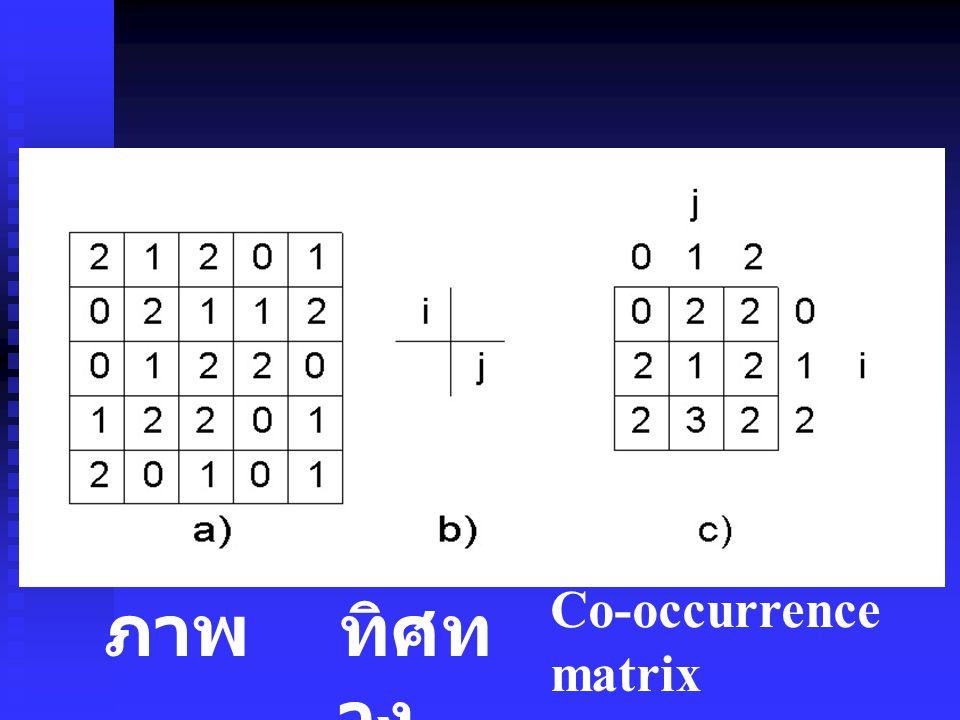 Co-occurrence matrix ภาพ ทิศทาง