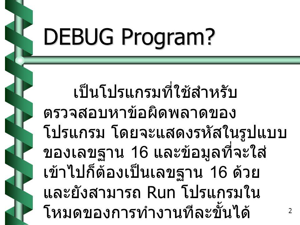 DEBUG Program