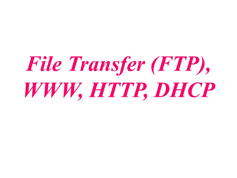 File Transfer (FTP), WWW, HTTP, DHCP
