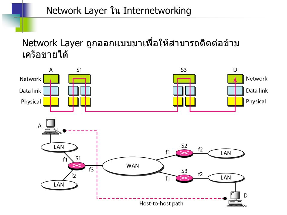 Network Layer ใน Internetworking