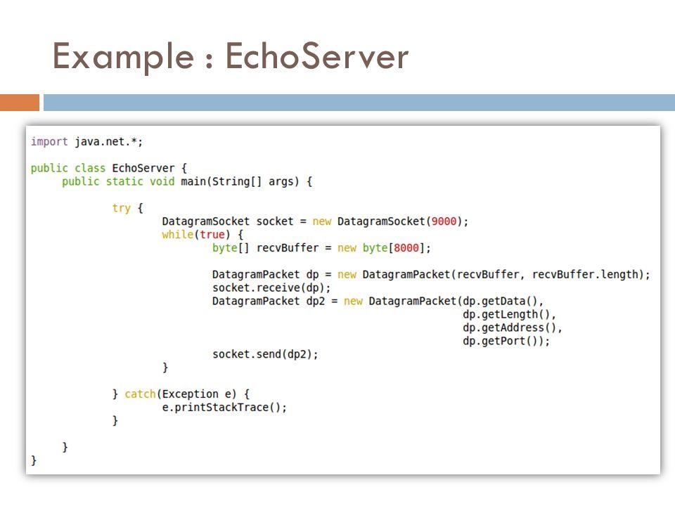 Example : EchoServer