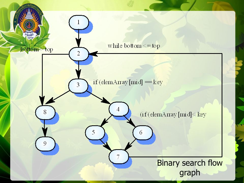Binary search flow graph