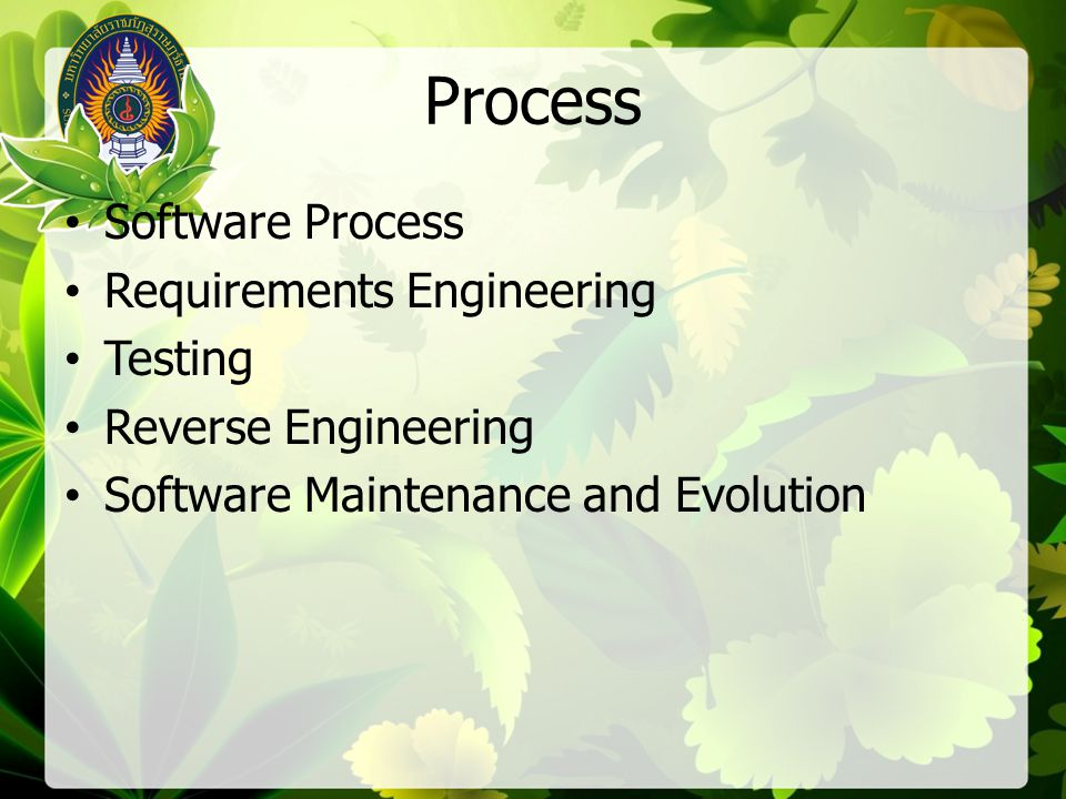 Process Software Process Requirements Engineering Testing