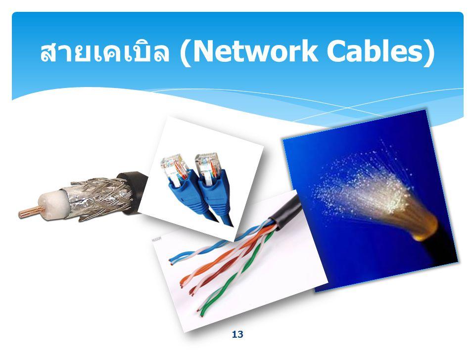 สายเคเบิล (Network Cables)