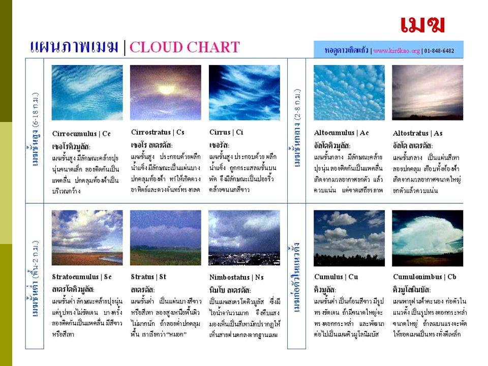 ชนิดของเมฆ