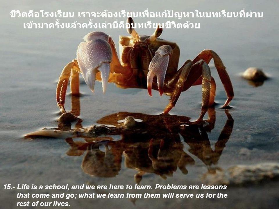 ชีวิตคือโรงเรียน เราจะต้องเรียนเพื่อแก้ปัญหาในบทเรียนที่ผ่านเข้ามาครั้งแล้วครั้งเล่านี่คือบทเรียนชีวิตด้วย