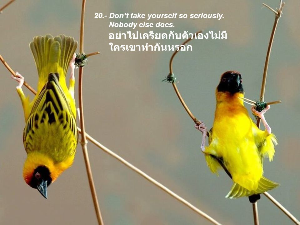 20.- Don't take yourself so seriously. Nobody else does.