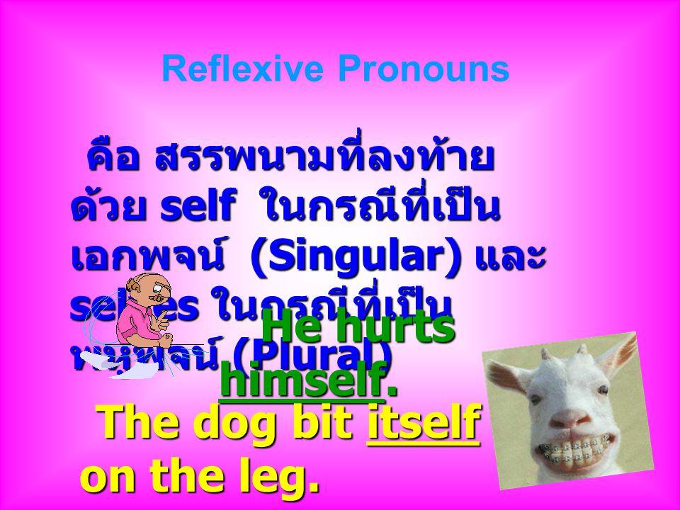 Reflexive Pronouns คือ สรรพนามที่ลงท้ายด้วย self ในกรณีที่เป็นเอกพจน์ (Singular) และ selves ในกรณีที่เป็นพหูพจน์ (Plural)