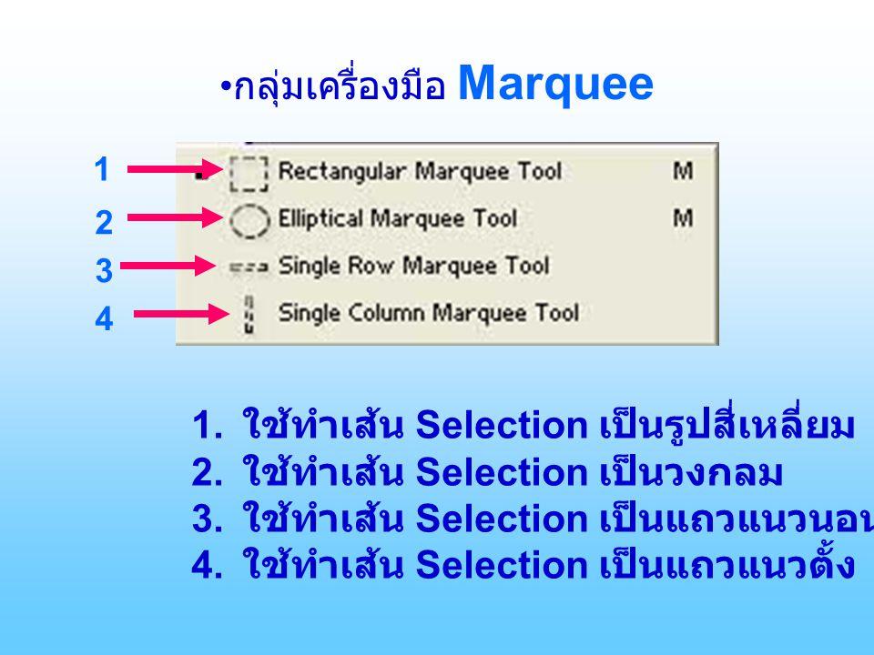 •กลุ่มเครื่องมือ Marquee