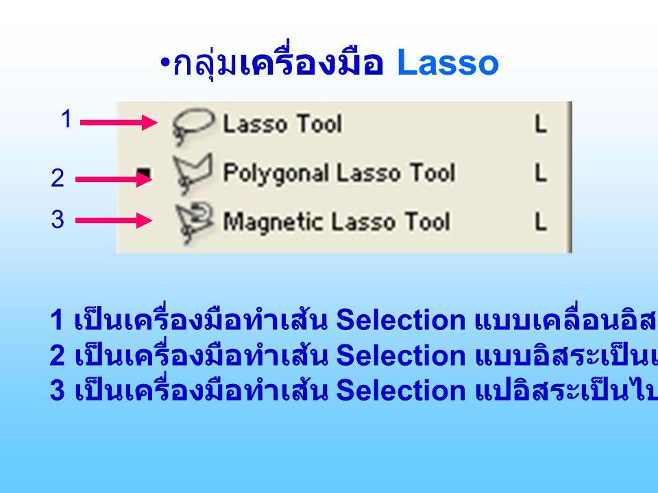 •กลุ่มเครื่องมือ Lasso