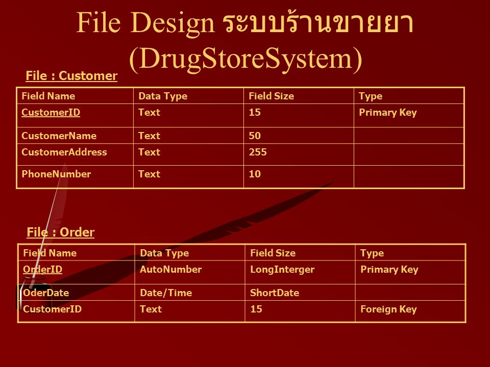 File Design ระบบร้านขายยา (DrugStoreSystem)