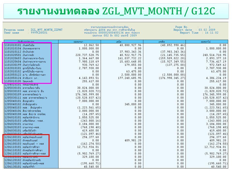 รายงานงบทดลอง ZGL_MVT_MONTH / G12C